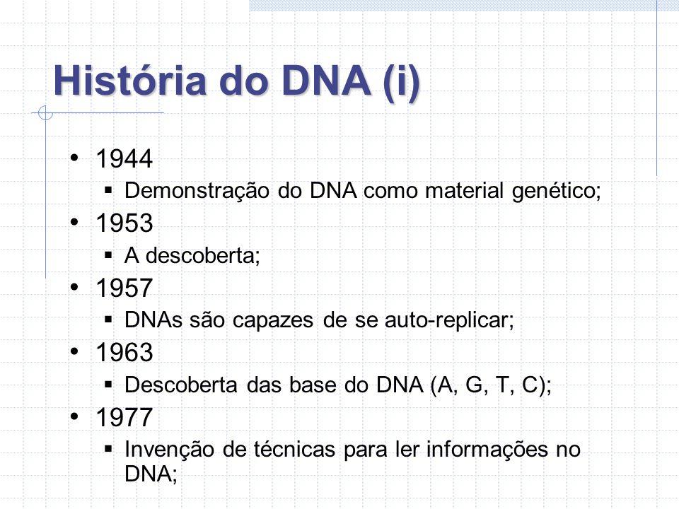 História do DNA (ii) 1978 Cientistas clonam um gene para produção de insulina humana; 1982 Primeiro animal por manipulação genética (um rato gigante); 1984 Técnica para identificação de pessoas através do DNA; 1987 Eva mitocondrial;