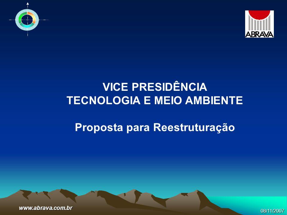 08/11/2007www.abrava.com.br VICE PRESIDÊNCIA TECNOLOGIA E MEIO AMBIENTE Proposta para Reestruturação