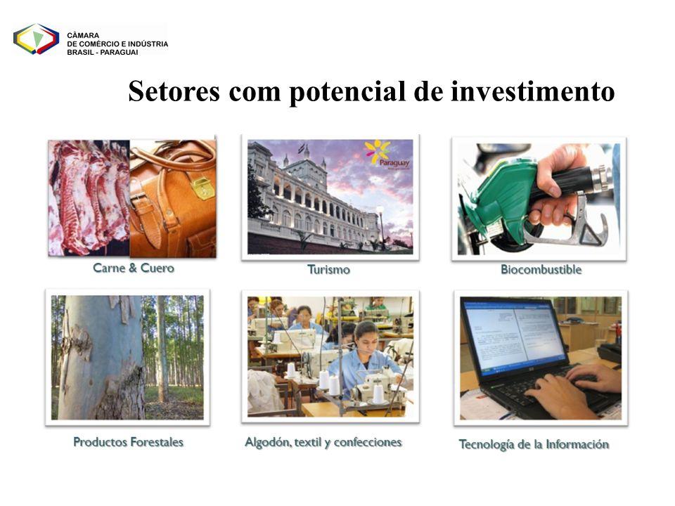 Setores com potencial de investimento