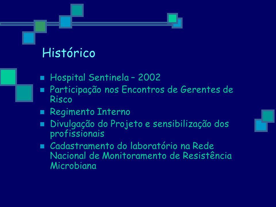 Histórico Hospital Sentinela – 2002 Participação nos Encontros de Gerentes de Risco Regimento Interno Divulgação do Projeto e sensibilização dos profi