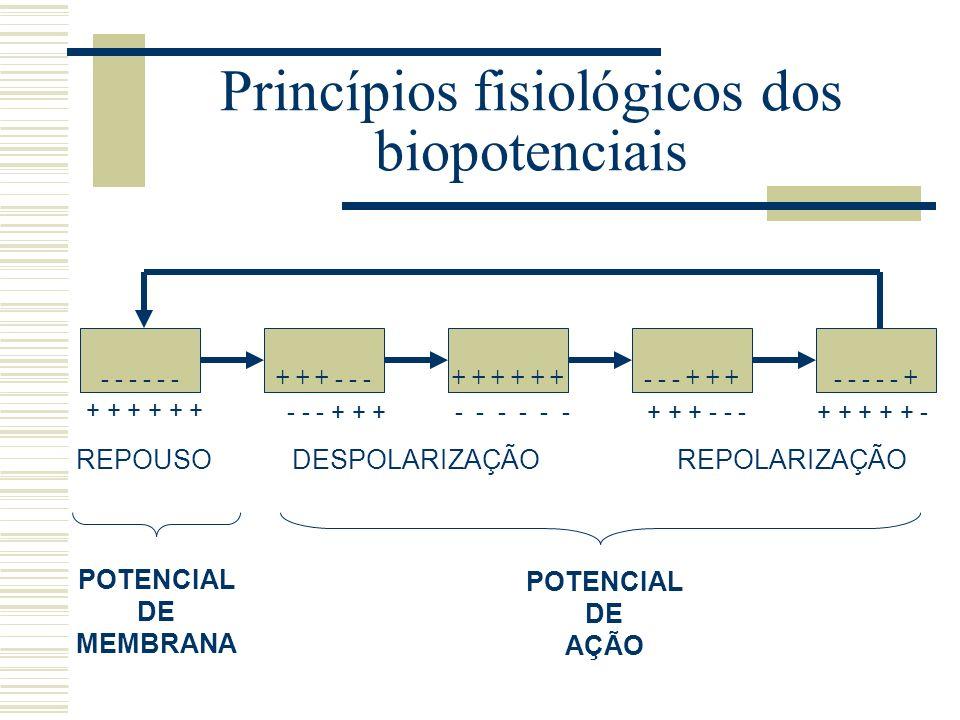 Princípios fisiológicos dos biopotenciais - - - REPOUSODESPOLARIZAÇÃOREPOLARIZAÇÃO POTENCIAL DE MEMBRANA POTENCIAL DE AÇÃO + + + - - -+ + + - - - + +