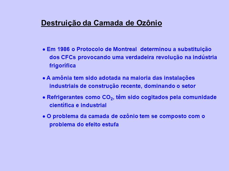 Destruição da Camada de Ozônio Em 1986 o Protocolo de Montreal determinou a substituição dos CFCs provocando uma verdadeira revolução na indústria fri