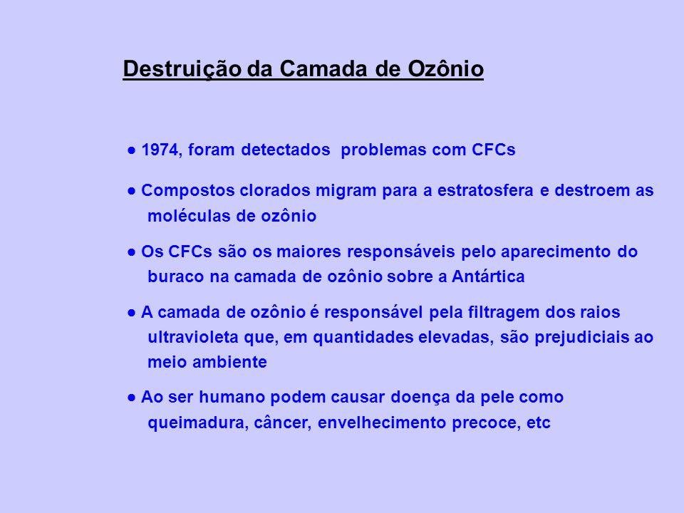 Destruição da Camada de Ozônio 1974, foram detectados problemas com CFCs Compostos clorados migram para a estratosfera e destroem as moléculas de ozôn