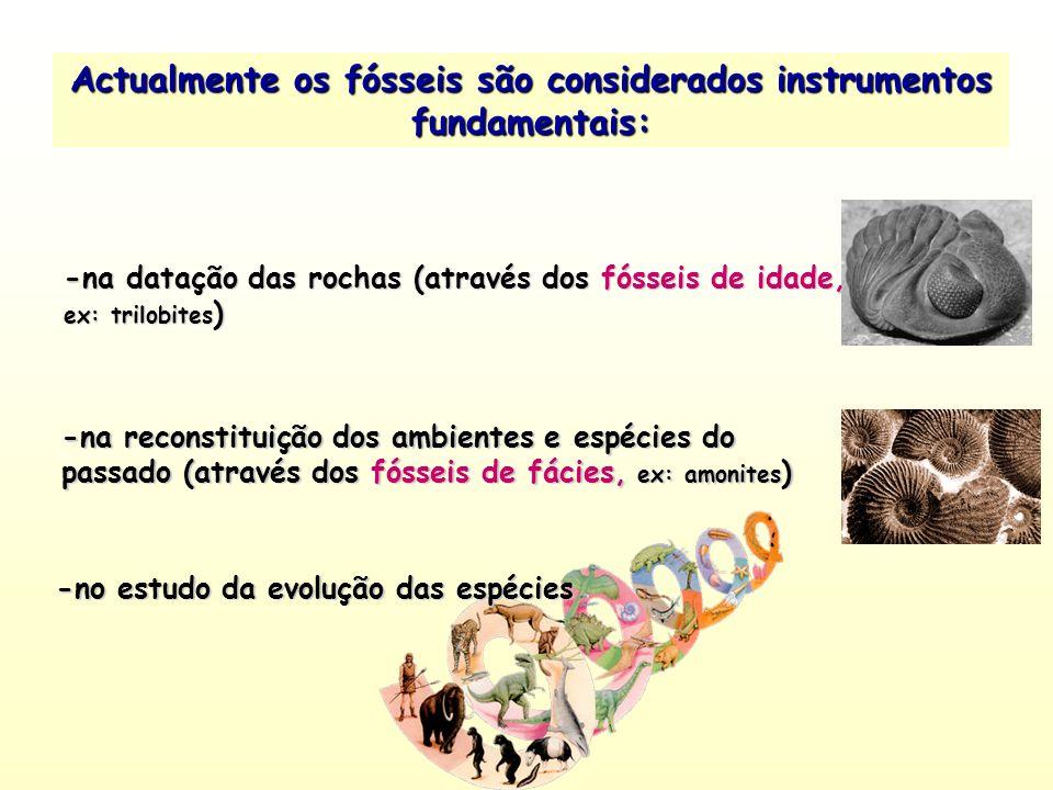 Actualmente os fósseis são considerados instrumentos fundamentais: -na datação das rochas (através dos fósseis de idade, ex: trilobites ) -na reconsti