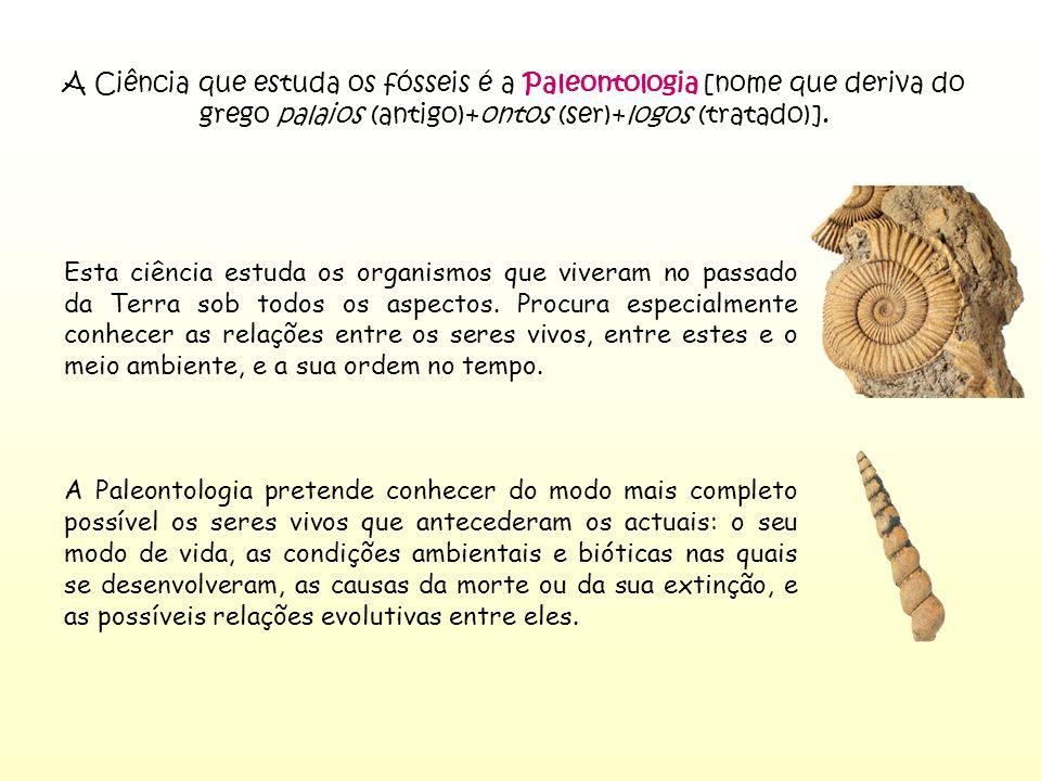 A Ciência que estuda os fósseis é a Paleontologia [nome que deriva do grego palaios (antigo)+ontos (ser)+logos (tratado)]. Esta ciência estuda os orga
