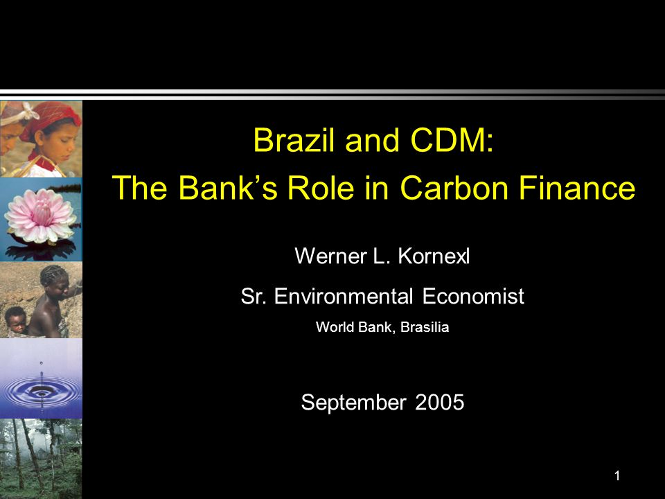 1 Brazil and CDM: The Banks Role in Carbon Finance Werner L. Kornexl Sr. Environmental Economist World Bank, Brasilia September 2005