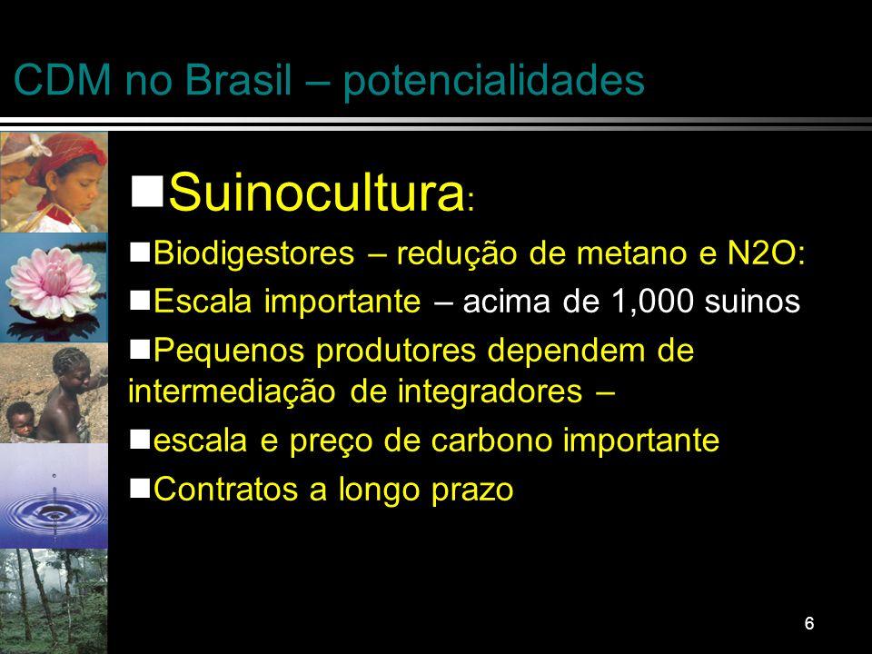 7 CDM no Brasil – potencialidades Energia renovável – apenas projetos que podem começar antes de 2006/7: Processos industriais – petroquimica, fertilizantes, cimento, ferro gusa, aluminium Projetos florestais – depende de pos 2012 acordo Biodiesel, eletrificação, transporte ….