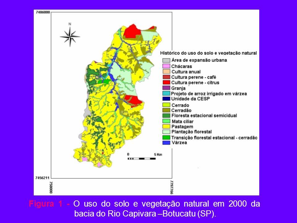 Figura 1 - O uso do solo e vegetação natural em 2000 da bacia do Rio Capivara –Botucatu (SP).