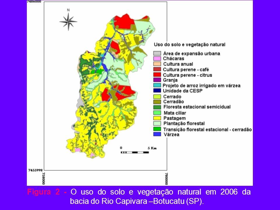Figura 2 - O uso do solo e vegetação natural em 2006 da bacia do Rio Capivara –Botucatu (SP).