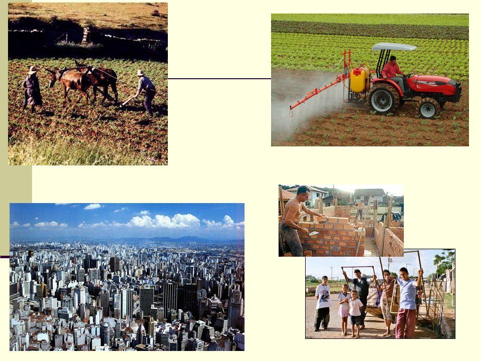 Efeitos da Urbanização Necessidade de infra-estrutura – saneamento básico, escola, hospitais, transporte público, moradia.