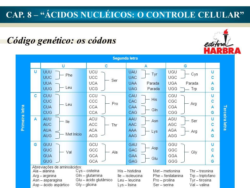 CAP. 8 – ÁCIDOS NUCLÉICOS: O CONTROLE CELULAR Código genético: os códons