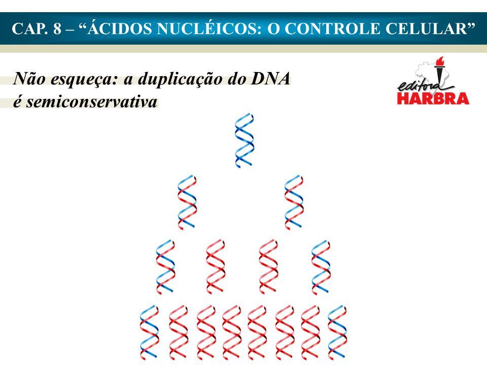 CAP. 8 – ÁCIDOS NUCLÉICOS: O CONTROLE CELULAR Não esqueça: a duplicação do DNA é semiconservativa