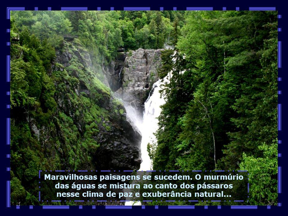 O Canyon de Ste-Anne é uma propriedade familiar aberta à visitação pública. É vencedora de vários concursos como melhor atração natural de Quebec...