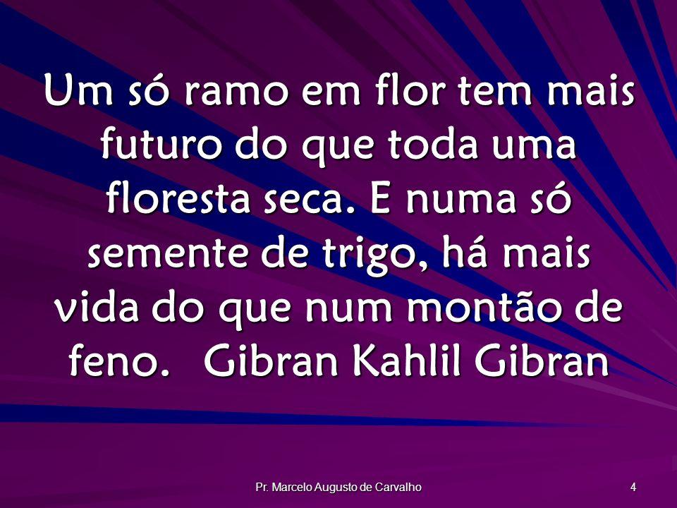 Pr. Marcelo Augusto de Carvalho 4 Um só ramo em flor tem mais futuro do que toda uma floresta seca. E numa só semente de trigo, há mais vida do que nu