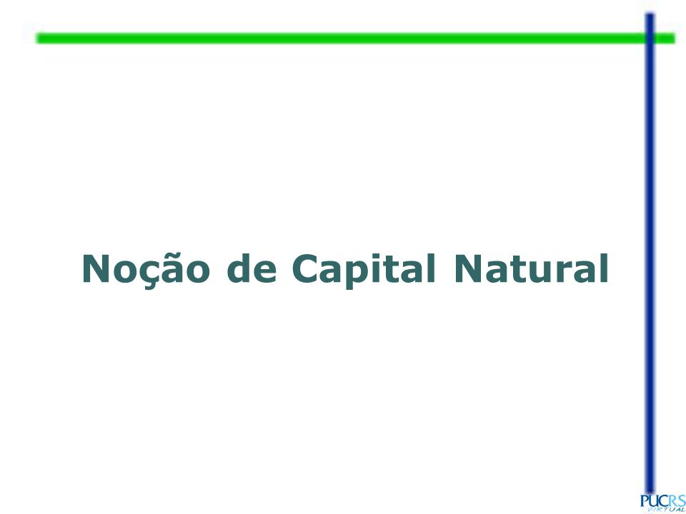 Noção de Capital Natural