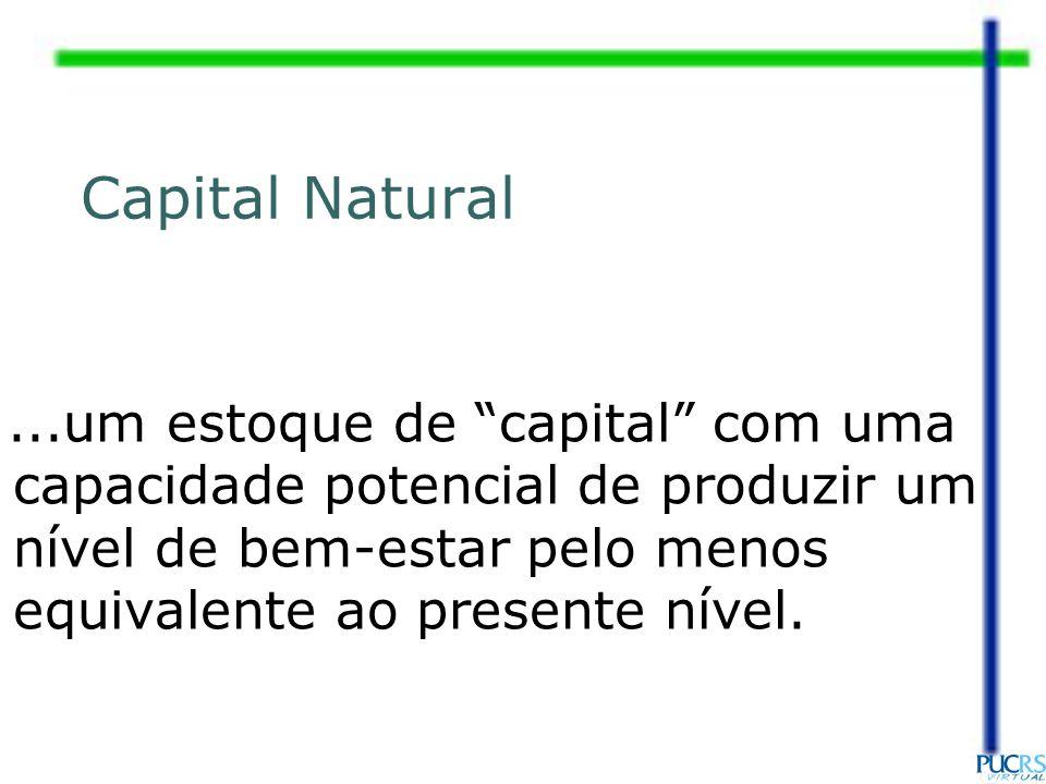 ...um estoque de capital com uma capacidade potencial de produzir um nível de bem-estar pelo menos equivalente ao presente nível. Capital Natural