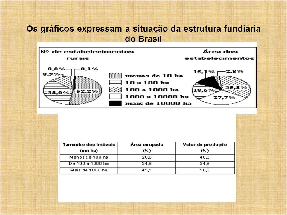 Os gráficos expressam a situação da estrutura fundiária do Brasil