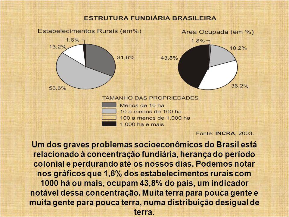 Um dos graves problemas socioeconômicos do Brasil está relacionado à concentração fundiária, herança do período colonial e perdurando até os nossos di