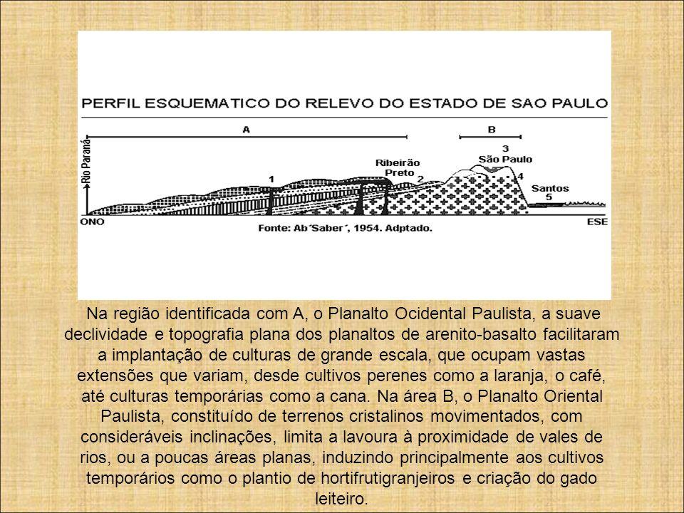 Na região identificada com A, o Planalto Ocidental Paulista, a suave declividade e topografia plana dos planaltos de arenito-basalto facilitaram a imp