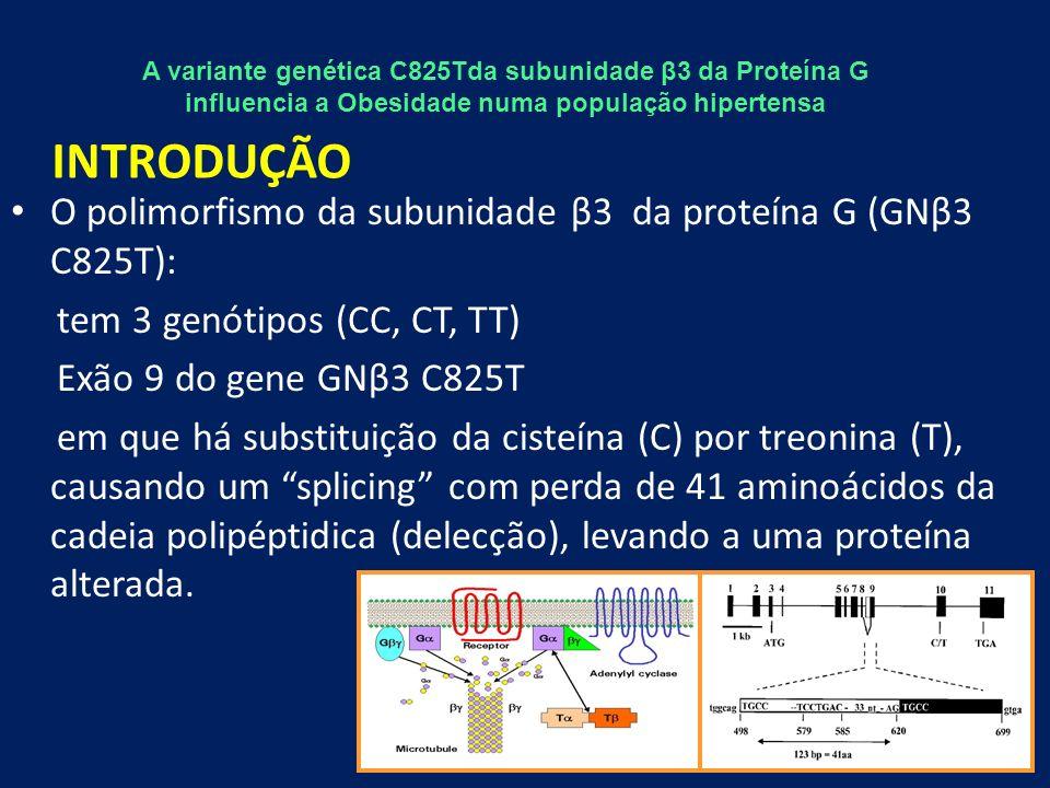 Tabela 5 – Variáveis associadas de forma independente com a Obesidade Resultados VariáveisBS.E.WaldOR (IC 95%)Valor-p GNβ3 (TT ou CT)0,5440,2634,2611,723 (1,028-2,887)0,039 PCR (as)0,3280,1733,5641,388 (0,988-1,949)0,059 Constante-1,1270,23822,328<0,0001 Legenda: B – Coeficiente estimado, com erro padrão S.E.; OR (IC 95%) – Odds Ratio (Intervalo de Confiança a 95%); Estatística significativa para p<0,05.