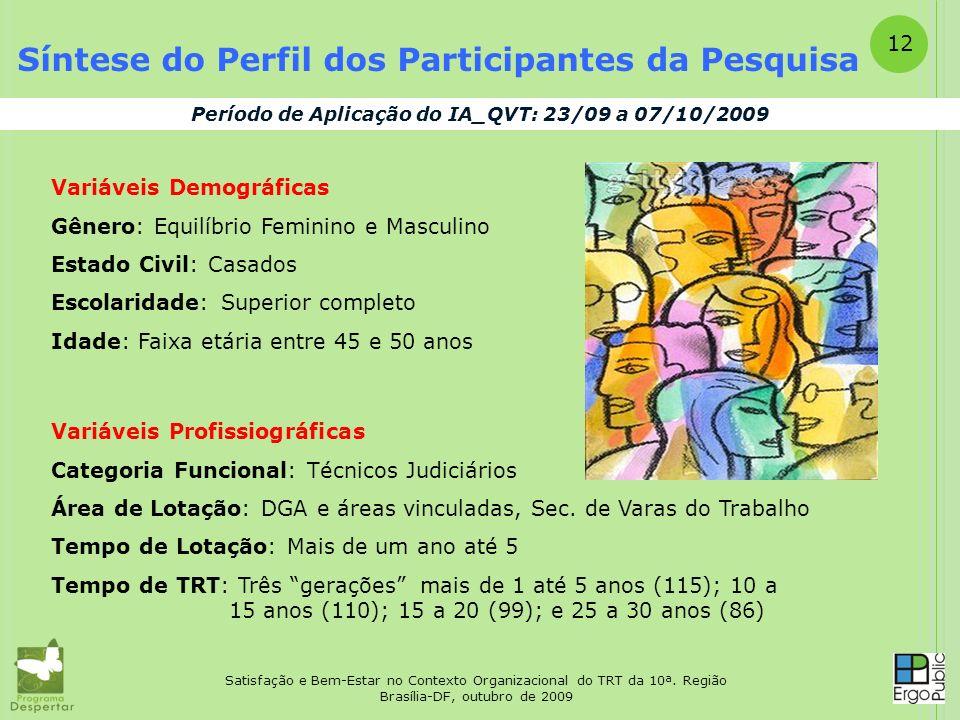 Satisfação e Bem-Estar no Contexto Organizacional do TRT da 10ª. Região Brasília-DF, outubro de 2009 12 Síntese do Perfil dos Participantes da Pesquis
