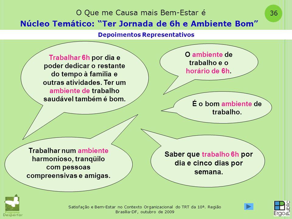 Satisfação e Bem-Estar no Contexto Organizacional do TRT da 10ª. Região Brasília-DF, outubro de 2009 36 Depoimentos Representativos Núcleo Temático: T