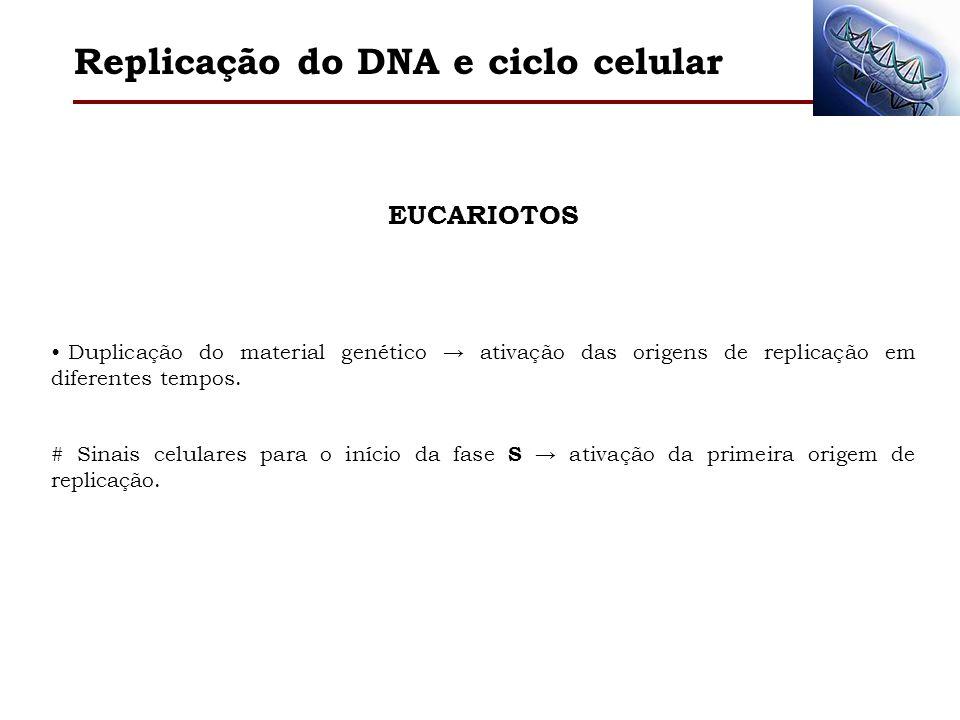 Replicação do DNA e ciclo celular EUCARIOTOS Duplicação do material genético ativação das origens de replicação em diferentes tempos. # Sinais celular