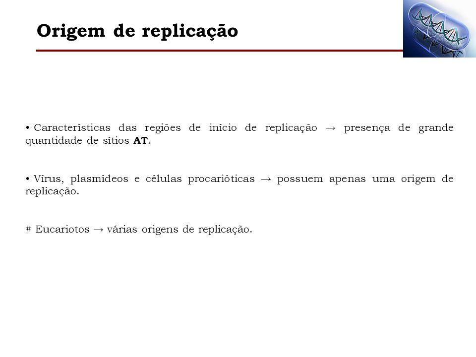 Origem de replicação Características das regiões de início de replicação presença de grande quantidade de sítios AT. Vírus, plasmídeos e células proca