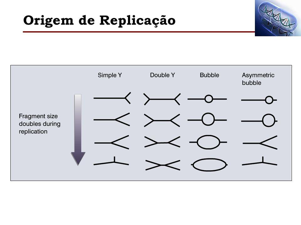 Origem de Replicação