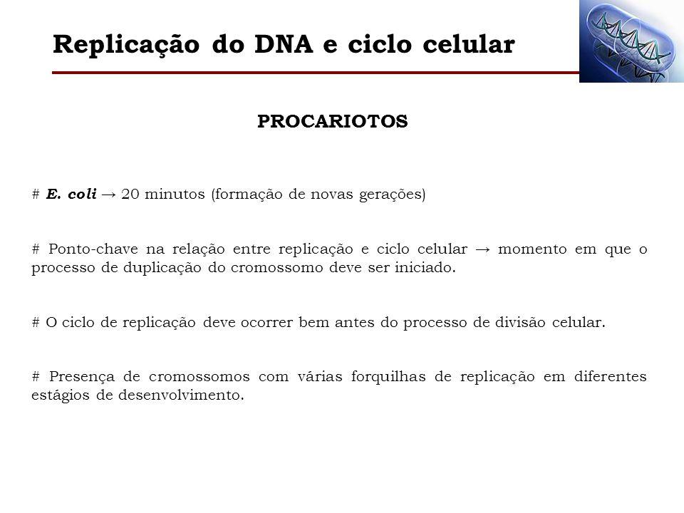 Replicação do DNA e ciclo celular PROCARIOTOSEUCARIOTOS