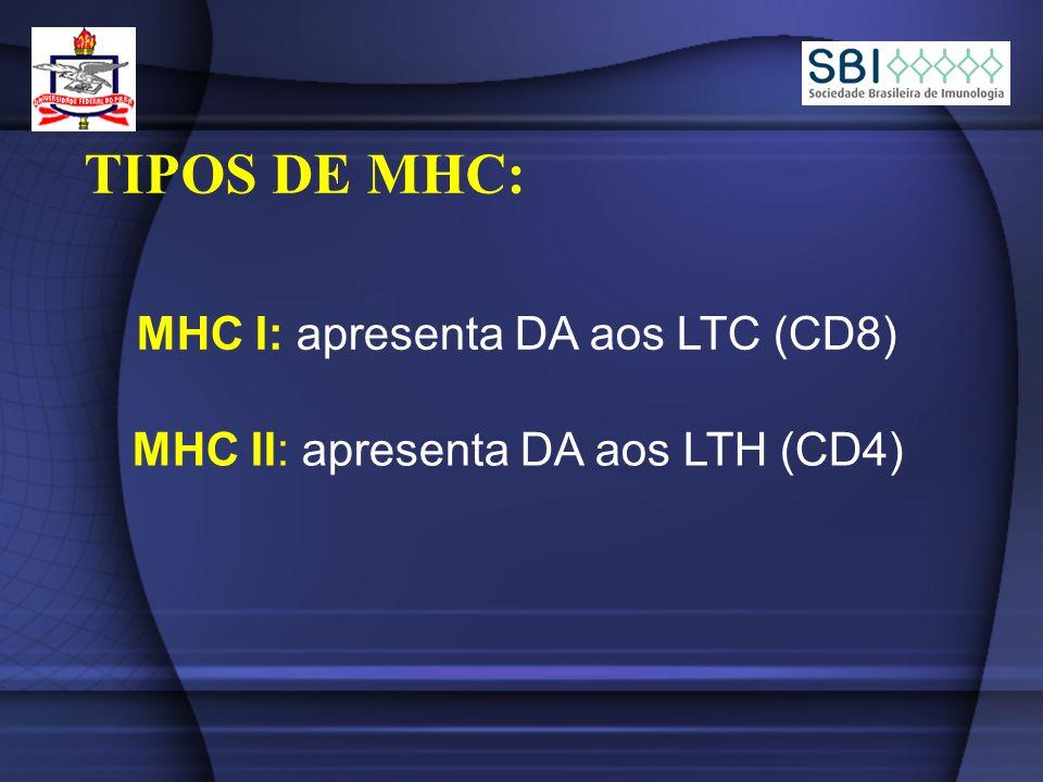 TIPOS DE MHC: MHC I: apresenta DA aos LTC (CD8) MHC II: apresenta DA aos LTH (CD4)