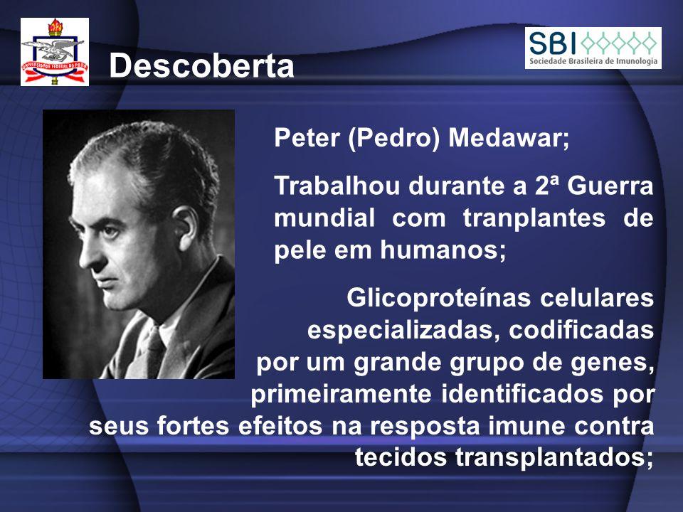 Descoberta Peter (Pedro) Medawar; Trabalhou durante a 2ª Guerra mundial com tranplantes de pele em humanos; Glicoproteínas celulares especializadas, codificadas por um grande grupo de genes, primeiramente identificados por seus fortes efeitos na resposta imune contra tecidos transplantados;