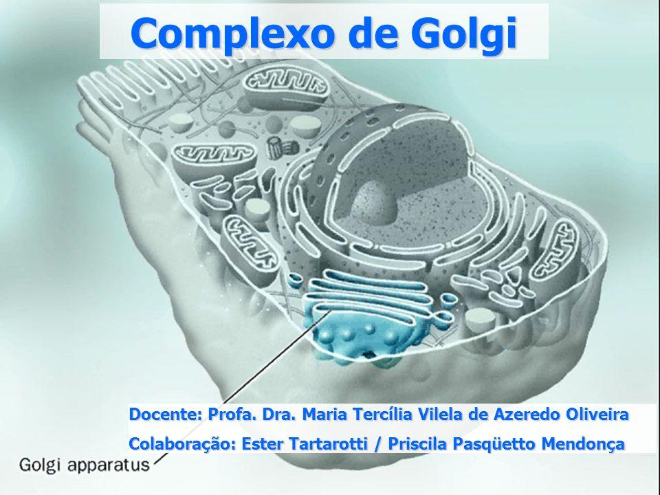 c) Análise bioquímica das frações de Golgi Isolamento da organela: centrifugação diferencial e gradientes em sacarose microssomos Enzimas específicas marcadoras do CG várias glicosiltransferases (adição de açúcares às proteínas e aos lipídios)