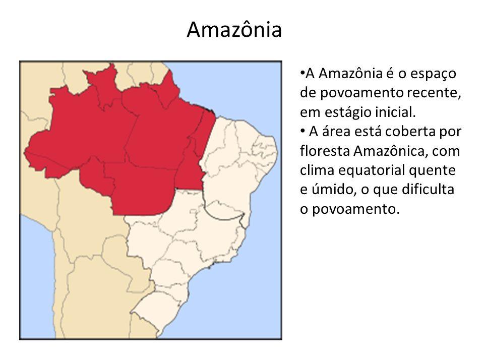 A Amazônia é o espaço de povoamento recente, em estágio inicial. A área está coberta por floresta Amazônica, com clima equatorial quente e úmido, o qu