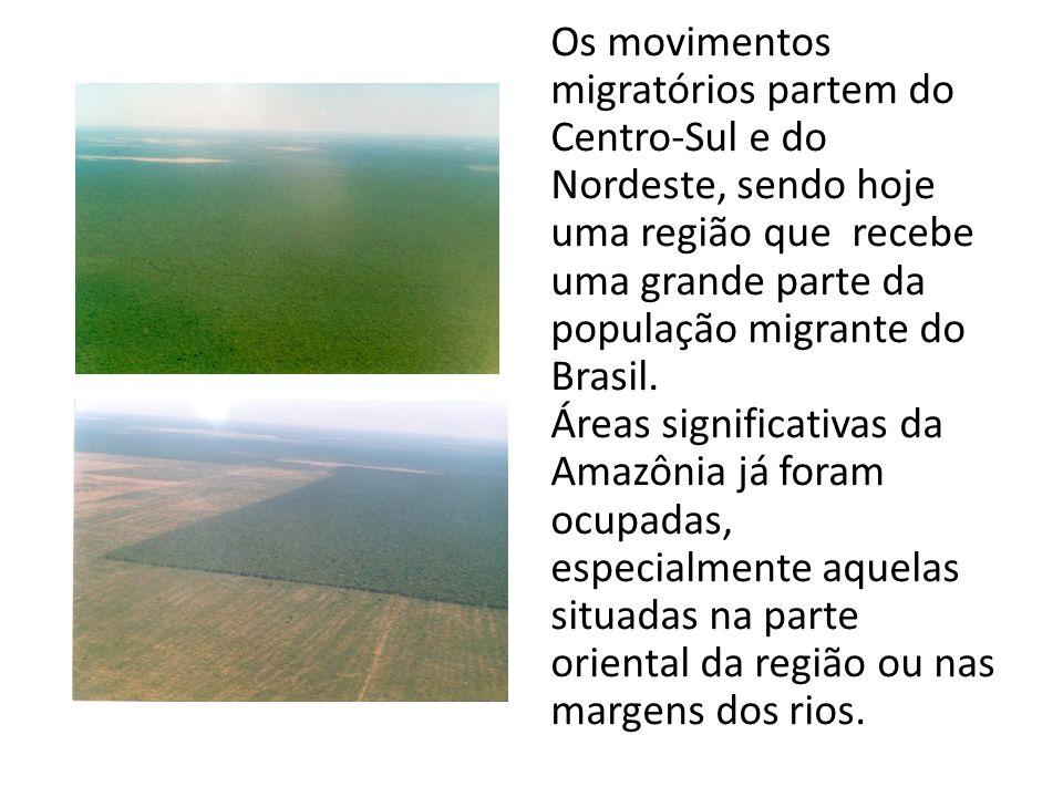 Os movimentos migratórios partem do Centro-Sul e do Nordeste, sendo hoje uma região que recebe uma grande parte da população migrante do Brasil. Áreas