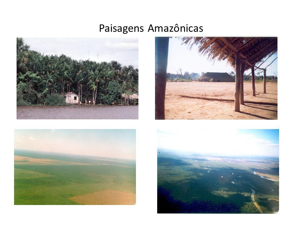 Paisagens Amazônicas