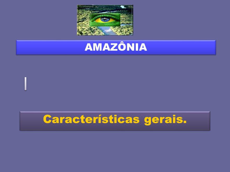 Características gerais. AMAZÔNIA