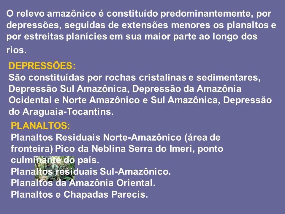 O relevo amazônico é constituído predominantemente, por depressões, seguidas de extensões menores os planaltos e por estreitas planícies em sua maior