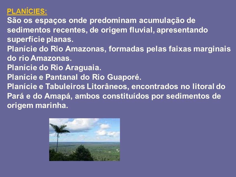 PLANÍCIES: São os espaços onde predominam acumulação de sedimentos recentes, de origem fluvial, apresentando superfície planas. Planície do Rio Amazon