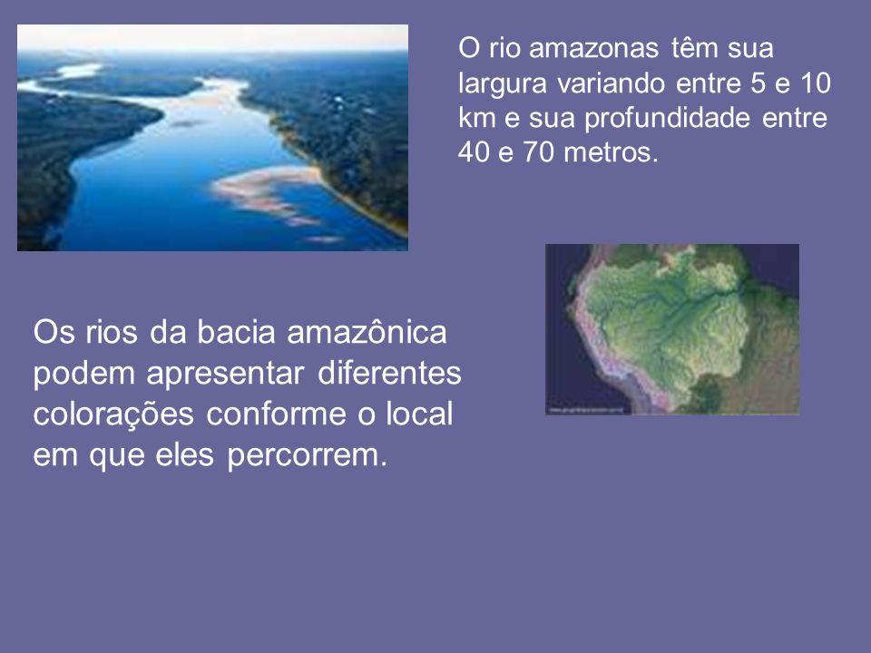 Os rios da bacia amazônica podem apresentar diferentes colorações conforme o local em que eles percorrem. O rio amazonas têm sua largura variando entr