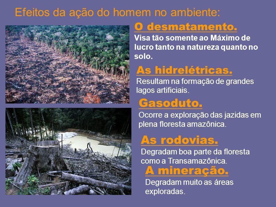 O desmatamento. Visa tão somente ao Máximo de lucro tanto na natureza quanto no solo. Efeitos da ação do homem no ambiente: As hidrelétricas. Resultam