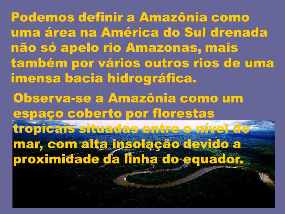 Podemos definir a Amazônia como uma área na América do Sul drenada não só apelo rio Amazonas, mais também por vários outros rios de uma imensa bacia h