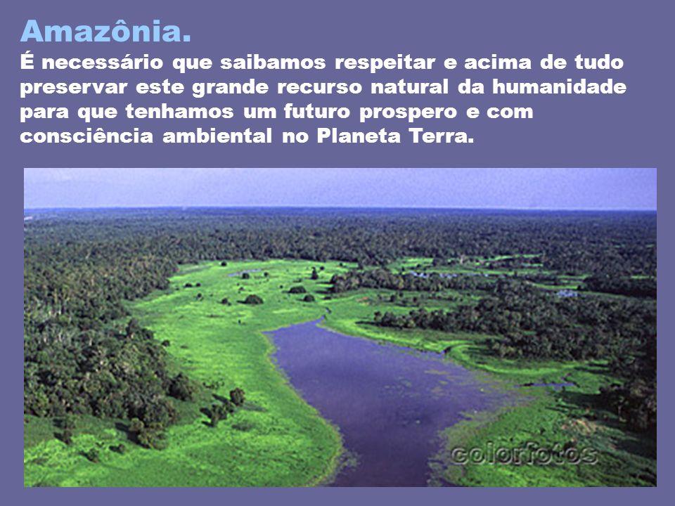Amazônia. É necessário que saibamos respeitar e acima de tudo preservar este grande recurso natural da humanidade para que tenhamos um futuro prospero