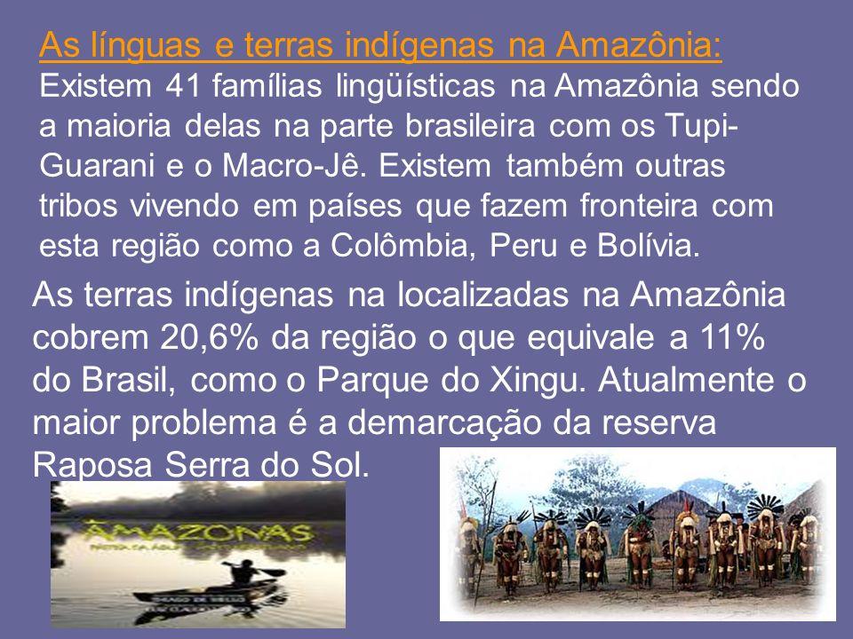 As línguas e terras indígenas na Amazônia: Existem 41 famílias lingüísticas na Amazônia sendo a maioria delas na parte brasileira com os Tupi- Guarani