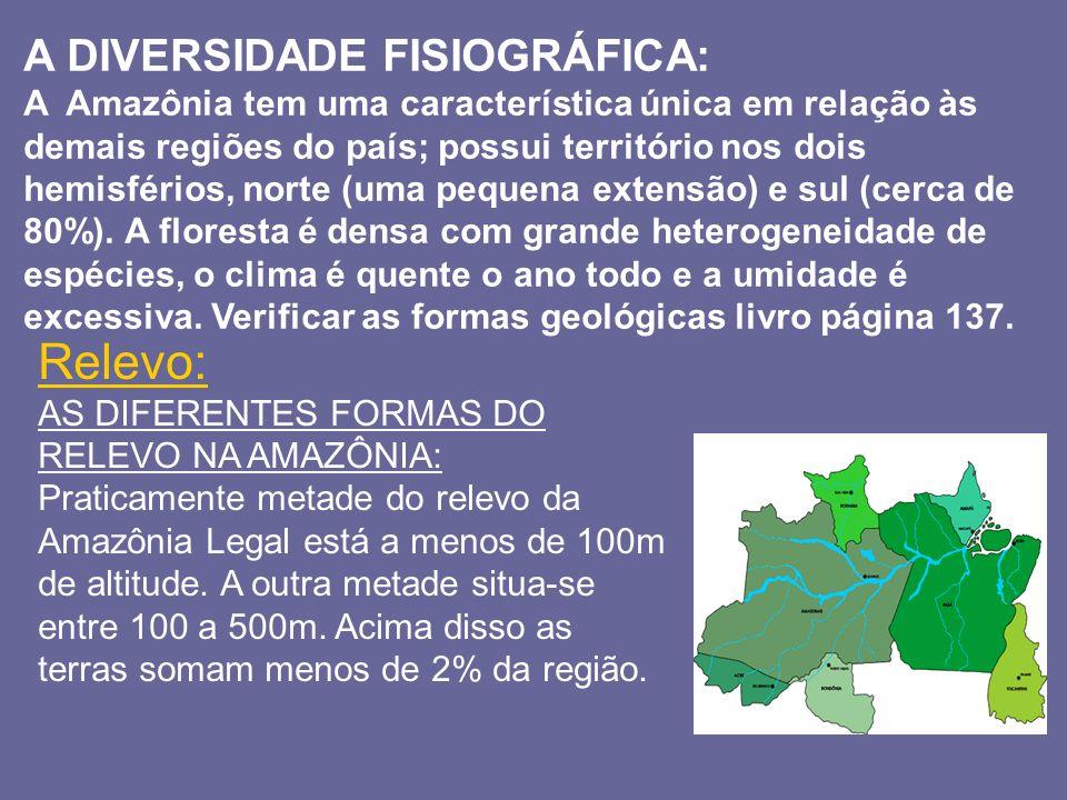 A DIVERSIDADE FISIOGRÁFICA: A Amazônia tem uma característica única em relação às demais regiões do país; possui território nos dois hemisférios, nort