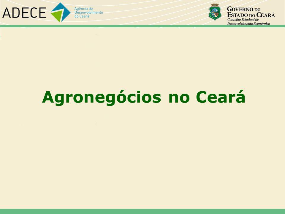 Agronegócios no Ceará