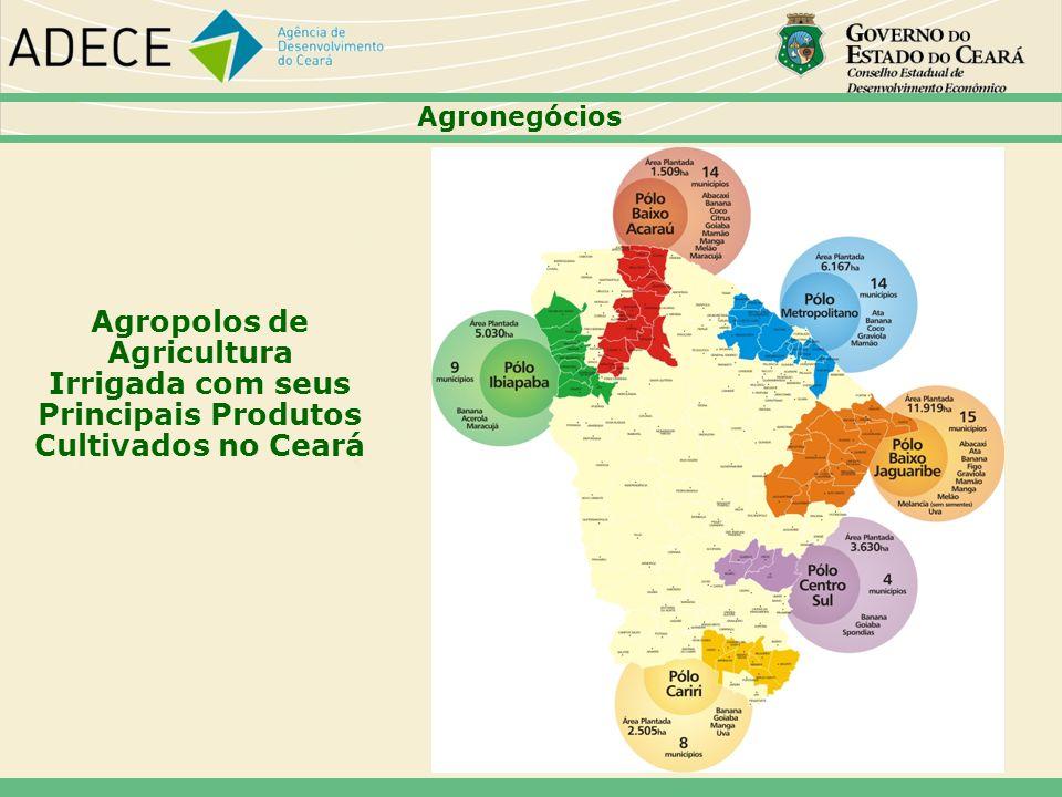 Agropolos de Agricultura Irrigada com seus Principais Produtos Cultivados no Ceará Agronegócios