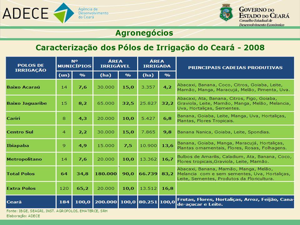 Caracterização dos Pólos de Irrigação do Ceará - 2008 Fonte: IBGE, SEAGRI, INST. AGROPOLOS, EMATERCE, SRH Elaboração: ADECE