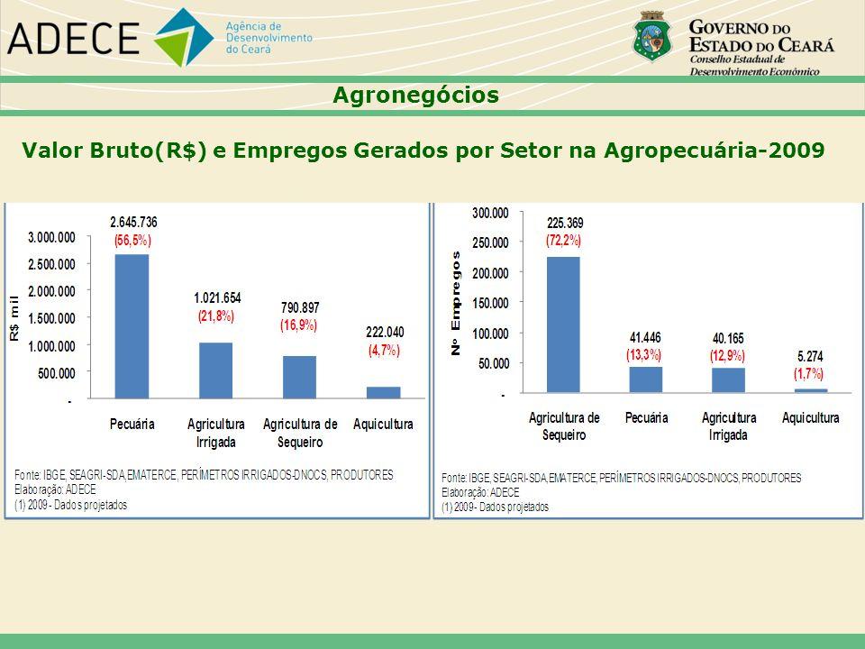 Agronegócios Valor Bruto(R$) e Empregos Gerados por Setor na Agropecuária-2009