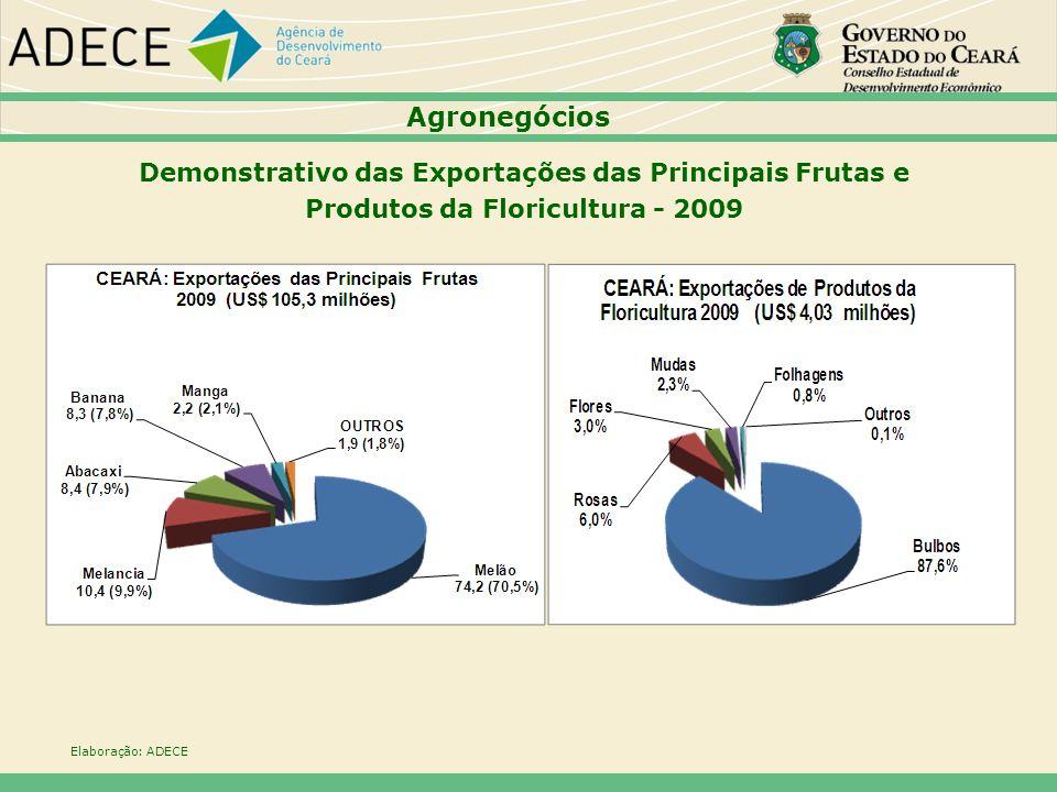 Demonstrativo das Exportações das Principais Frutas e Produtos da Floricultura - 2009 Elaboração: ADECE Agronegócios